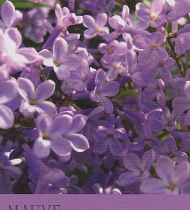 9/30~10/6のカラーカード:「モーブ/藤色」