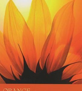 9/7~9/13のカラーカード:「オレンジ」