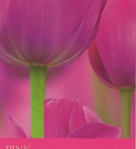 6/1~6/7のカラーカード:「ピンク」