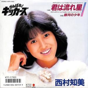 カラオケ動画:西村知美「君は流れ星」を歌ってみた