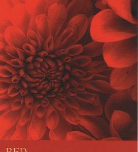9/14~9/20のカラーカード:「レッド」