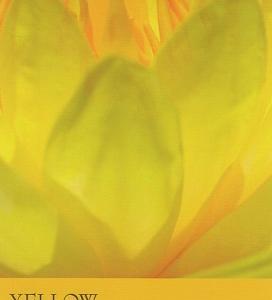 9/21~9/27のカラーカード:「イエロー」