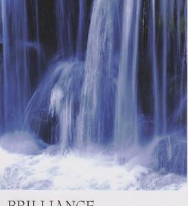 11/9~11/15のカラーカード:「ブリリアンス/光沢」