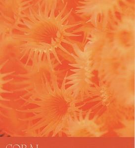 9/6~9/12のカラーカード:「コーラル/珊瑚色」