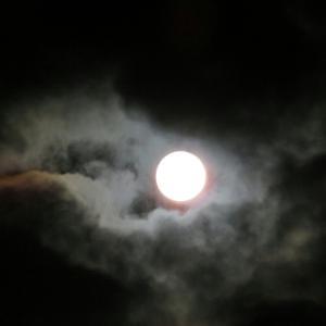 昨日の満月、そして師走