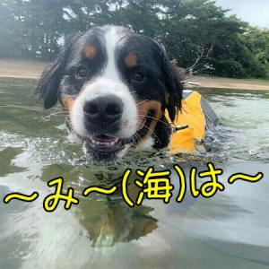 福島の海?で泳いでから宿場町でお蕎麦な休日♪