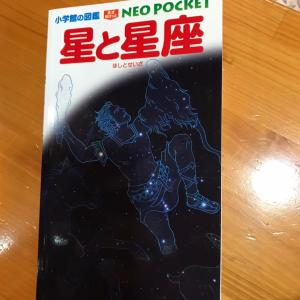【家庭学習】息子とデートが家庭学習に!と国語系辞典が4冊目になりました!