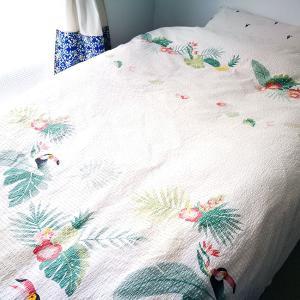 【寝袋+コット】をやめて【布団+ベッド】に戻した話