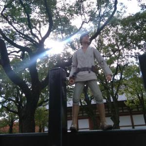 今日の空 明日11/21(木) 空海さんのおられる京都の東寺[弘法市[に出店いたします
