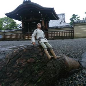 今日の空 明日21日は、空海さんのおられる京都の東寺 弘法市に出店いたします‼