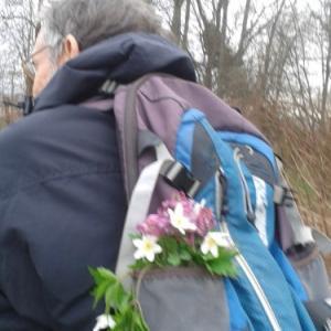 春の森散歩