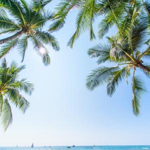 新型コロナウィルス・ハワイ州の最新情報〜事前検査プログラムの導入について