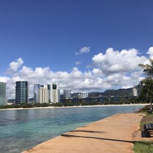 エッグドナーとしてハワイでのロングステイ。あなたならどう過ごす?