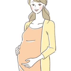 現在妊娠8ヶ月!卵子提供レシピエント体験記です。