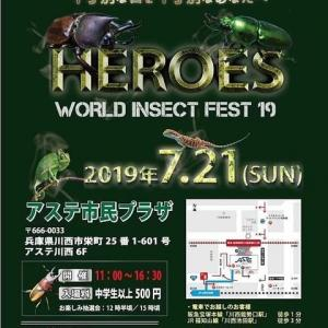 HEROES INSECT FEST'19♪