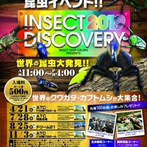 INSECT DISCOVERY 2019