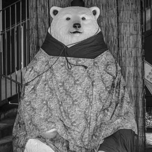 雛祭りを待つシロクマ