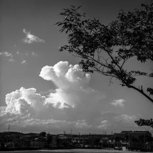 フォトグラファーほいほいな積乱雲