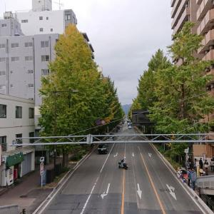 秋の高尾山(その2)