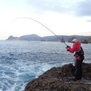 半年ぶりのメジナ漁!