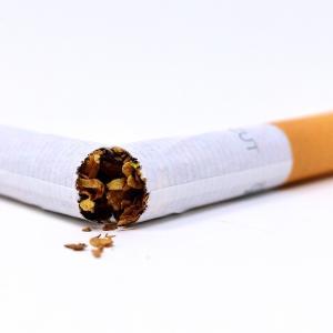 飼い主さんがタバコを吸っているとペットも不健康になる?