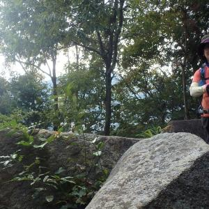 武田山へトレーニング