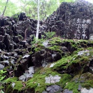 新見市哲多町 『荒戸山&鯉が窪湿原散策』