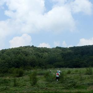 NPO西中国山地自然史研究会『2019 千町原の草刈り 夏』