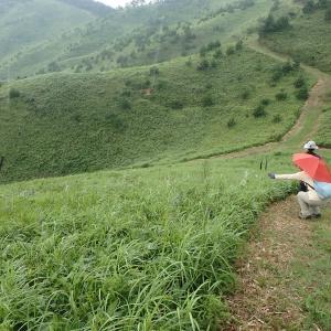 雲月山の自然観察(blog)