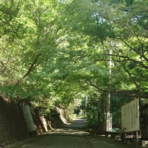 施福寺 大阪