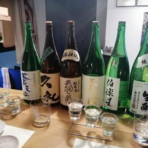 酒バル、シュワ酒和 - Sake Bar, Shuwa Shuwa