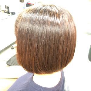 頭皮・髪質が変わる  ヘナトリートメントカラーとハーブカラーで色調節
