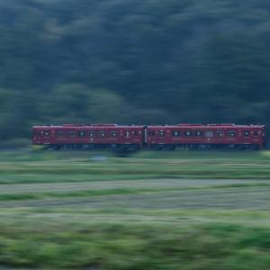 雨のことこと列車