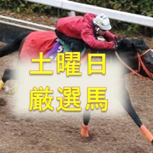 土曜日厳選馬!!【初茜賞2021 予想】【東雲賞2021 予想】