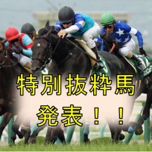 特別抜粋馬発表!!【富士ステークス2020 予想】【菊花賞2020 予想】