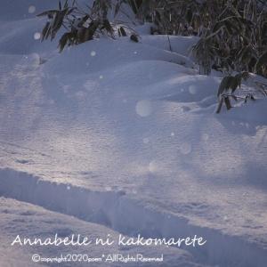 【ダイヤモンドダスト】今冬一番冷え込んだ朝は氷の花が咲いていた!