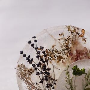 【ガーデニング】北国ならではの冬の花遊び♪映え間違いなしの氷のために用意しておきたくなった花々♪