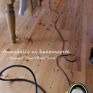 【掃除家電】素足がさらさら気持ちいい床&ふっかふかに戻るカーペット♪もうすでに元は取った感ありのおススメ家電!