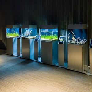 すみだ水族館 FILE:8 クラゲ万華鏡トンネル