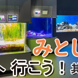 【みとしー】伊豆・三津シーパラダイスへ行こう!其の二【動画】