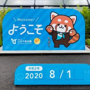 【日本平動物園】マレーバクとシシオザルの赤ちゃん【動画】