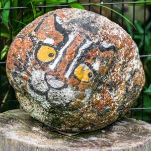 井の頭自然文化園 動物園 FILE:8