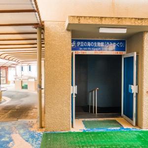 【下田海中水族館】うみめぐり FILE:11 研究エリア