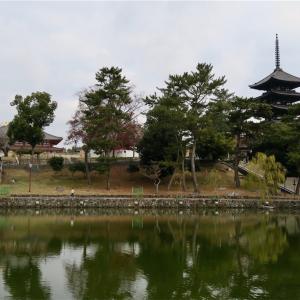 猿沢池と興福寺(奈良市)