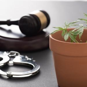 米テネシー州法廷でマリフアナ吸引!マリフアナを合法化主張の末路!!