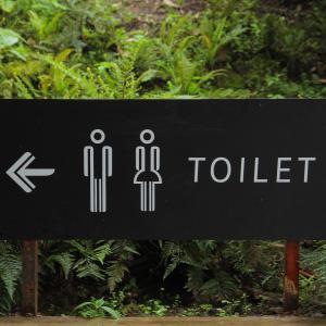 子供の学校のトイレ事情!子供の『学校でウンチしない宣言』にどう対応する?