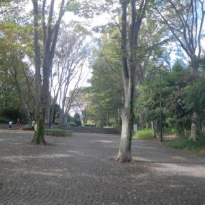 「行楽日和」になった日曜も公園散歩&カフェ(20日)~♪