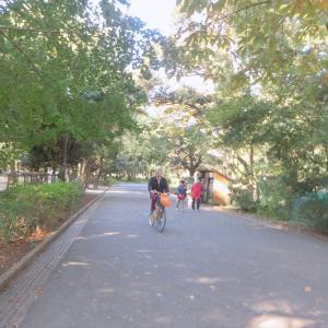 「行楽日和」の日曜(10日)も公園散歩&カフェしたよ~♪