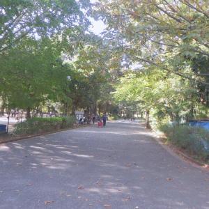 「行楽日和」の日曜(17日)は公園散歩&カフェしたよ~♪