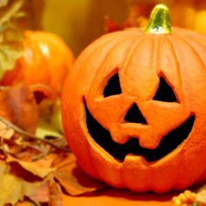 ハロウィンかぼちゃの保存方法と期間!簡単な捨て方とエコな処分方法をチェック